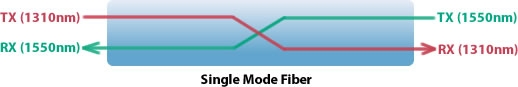 Single Mode Fiber Diagram
